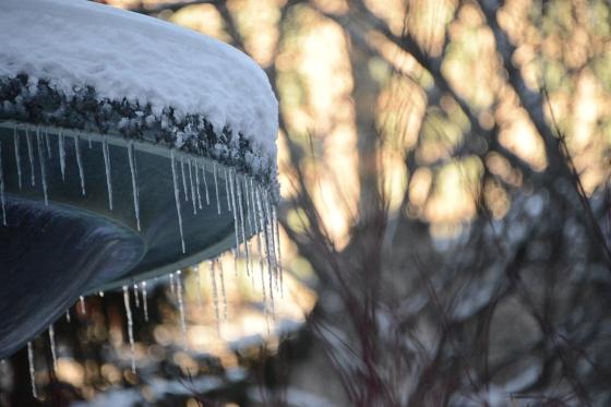 fountain freeze