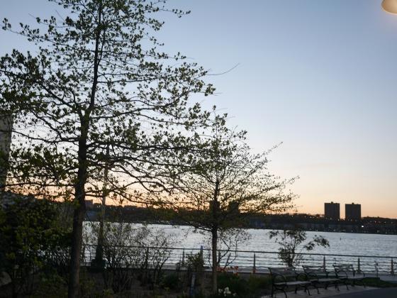 Hudson River Partk