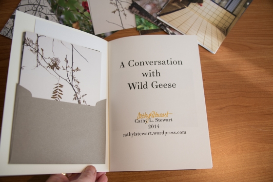 A Conversation with Wild Geese