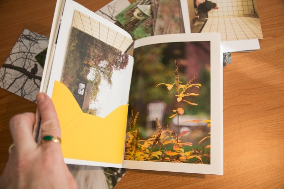 Scattered through the book are postcards for you to select and send...continuing the conversation.