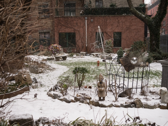 Dusting the Community Garden, Hell's Kitchen