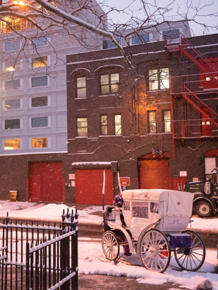 Snowy eve at the park Hell's Kitchen Cathy Stewart