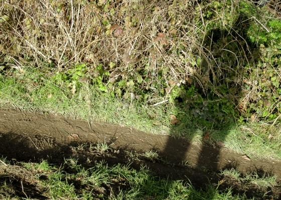 Self Portrait on Muddy Path Keith Osborn
