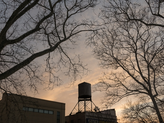 Hell's Kitchen Water Tower Cathy Stewart