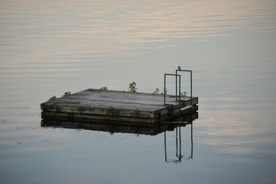 On Lauderdale Lake Cambridge, NY Cathy L. Stewart