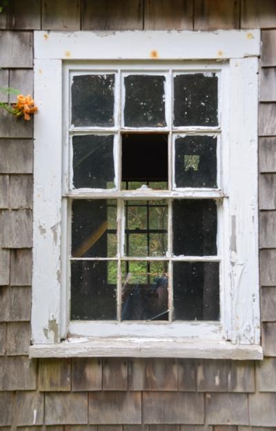 through the window Cathy Stewart